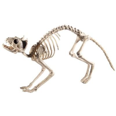 Skelettprydnad - Katt
