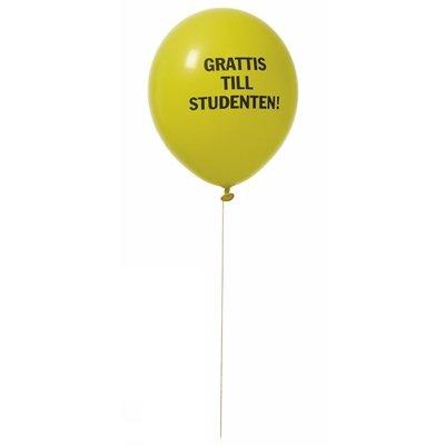 Studentballonger 8-p - Gul/blå