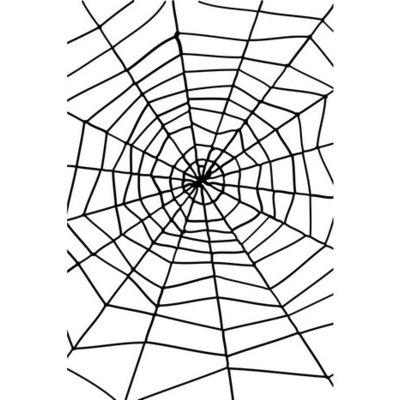 Enormt spindelnät med spindel