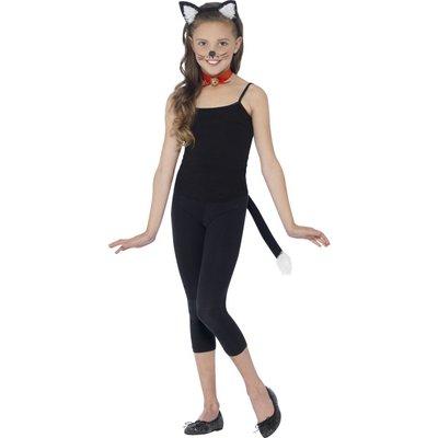 Katt kit