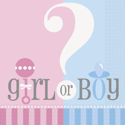 Servetter - Pojke eller flicka 33 cm 20 st
