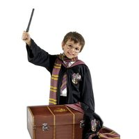 Harry Potter bagage